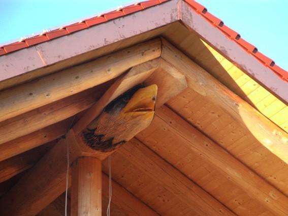 Naturstammhaus Neubauobjekt in Owingen mit Adler-Carving