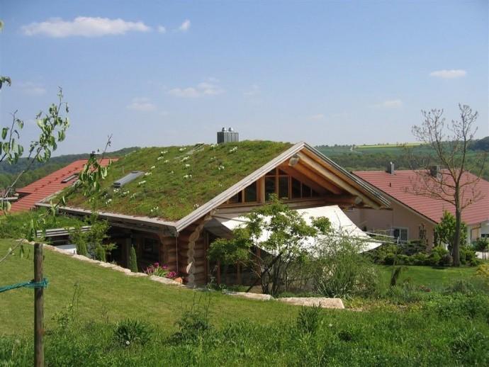 Naturstammhaus in Vaihingen