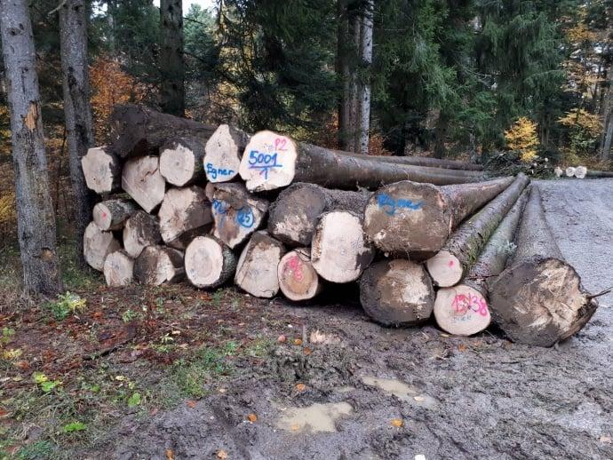 Bestes Holz für Ihr 2018er Blockhaus